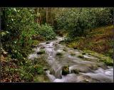 Borning river !!