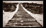 ...Wood road ...