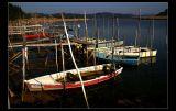 Lagoa de Obidos - Portugal