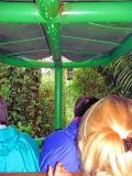 Rainforest aerial (read text)