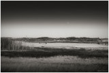 Daymoon over the Marsh
