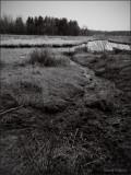 Token Creek Watershed