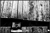 wood52hc.jpg