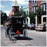 Amish Buggy going through town