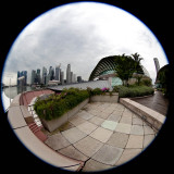 From the roof of the Esplanade Library