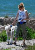 The Dog Walker 3