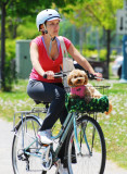 The Cyclist 2