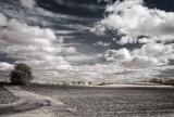 IR countryside.jpg