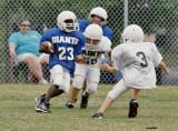 The Linebacker