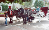 Want a carriage ride?