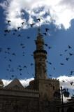 Ommayad Mosque