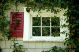 Miriam's Window
