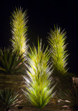 Chihuly_(23_of_23).jpg