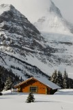 Assiniboine Lodge Cabin