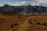 Views from Bald Hills, Jasper National Park