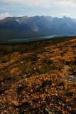 Views of Maligne Lake, Jasper National Park
