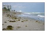 Hollywood Beach - 3168