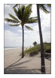 Hollywood Beach - 3195