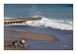 Jeux dans le sable - 3570