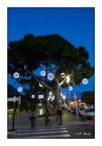 Jardin Albert 1er - Nice - 2843
