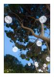Jardin Albert 1er - Nice - 2844
