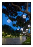 Jardin Albert 1er - Nice - 2846