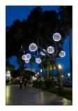 Jardin Albert 1er - Nice - 2852