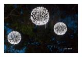 Illuminations à Nice - 2856
