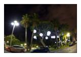 Promenade des Anglais - Nice - 3083