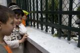 Istanbul june 2009 2502.jpg