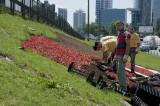Istanbul June 2010 7396.jpg