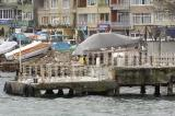 Bosporus trip 0348