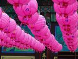 Lanterns for Buddha Birthday