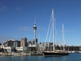 The Auckland City Harbor