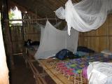 mosquito net around my sleeping area