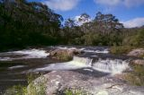 Carrington-Falls-3.jpg