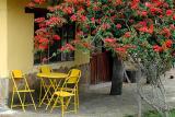 Troudi's Porch
