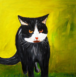 Angry Cat painted on 20 inch x 20 inch canvas for £85