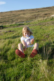 Amber sat on the moorland grass