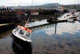 The Harbour Scarborough