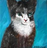 Snooty the Kitten