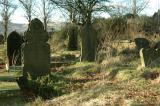 Old Grave Yard