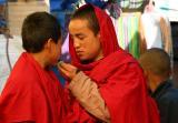 young monks-Bhutan