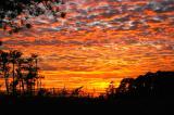 Sunset #4.JPG