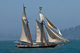 San Francisco Sailship Parade_1433.jpg