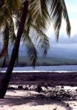 Mauna Loa from City of Refuge