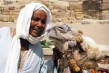 Eqyptian Man and his Camel