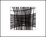 Web We Weave