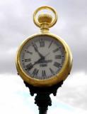 Time Flies When...