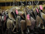 Pawn Shop - Saddles and Tack
